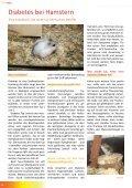 TierZeit - Ausgabe 3 - Seite 4
