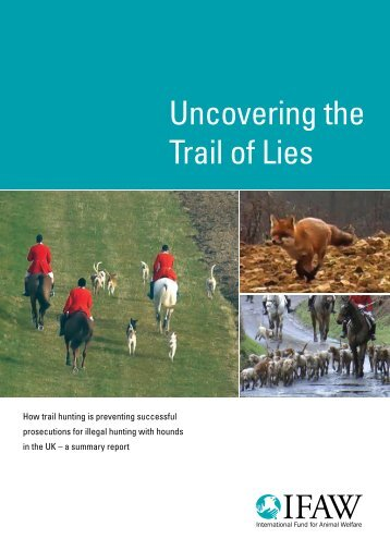 Uncovering the Trail of Lies