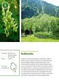 Neue Europaschutzgebiete in Vorarlberg - Page 6