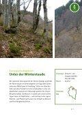 Neue Europaschutzgebiete in Vorarlberg - Page 7