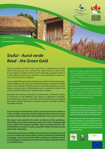 Stuful - Aurul verde Reed