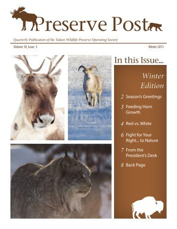 Preserve Post - Winter Edition - YWP 2015