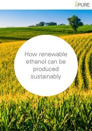 How renewable ethanol can be produced sustainably