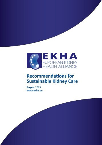 Recommendations for Sustainable Kidney Care
