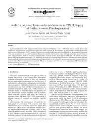 Additive polymorphisms and reticulation in an ITS phylogeny of ...