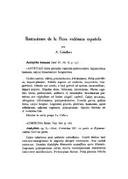 Ilustraciones de la Flora endémica española - Real Jardín Botánico