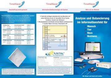 Analyse und Balancierung im Informationsfeld für