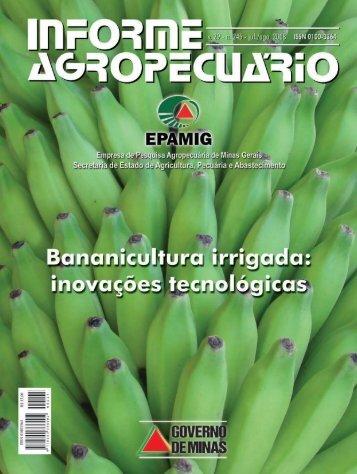 banana economia