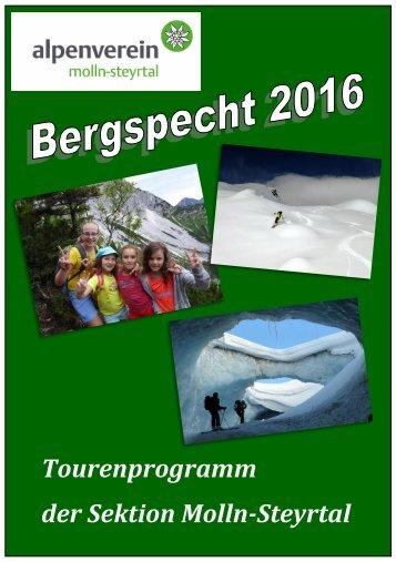 Bergspecht 2016