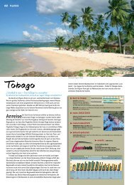 Tobago - Surf & Action