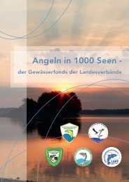 Angeln in 1000 Seen