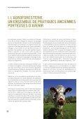 PLAN DE DÉVELOPPEMENT DE L'AGROFORESTERIE - Page 6
