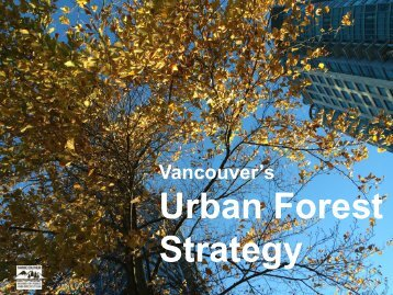 Urban Forest Strategy