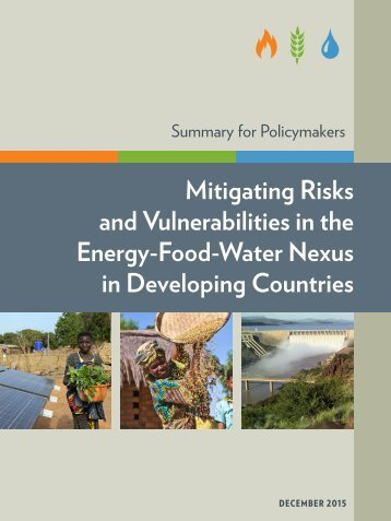 and Vulnerabilities in the Energy-Food-Water Nexus in Developing Countries
