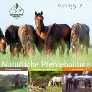 PLOCHER Pferde-Katalog 07-2015 CH JUAG