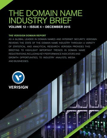 THE DOMAIN NAME INDUSTRY BRIEF
