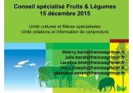 Conseil spécialisé Fruits & Légumes 15 décembre 2015