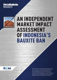 ASSESSMENT OF INDONESIA'S BAUXITE BAN