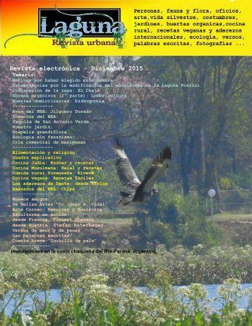 Laguna, revista urbana- diciembre 2015