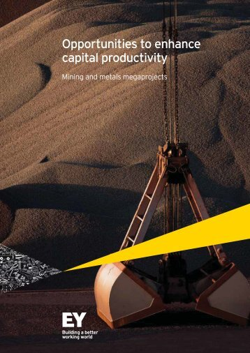 Opportunities to enhance capital productivity