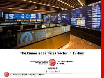The Financial Services Sector in Turkey
