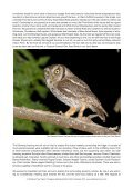 PARAGUAY NEOTROPICAL BIRD CLUB FUNDRAISER - Page 4