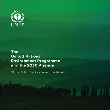 Environment Programme and the 2030 Agenda