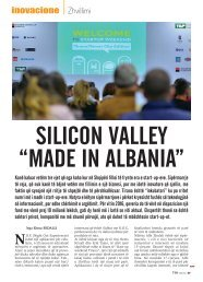 "SILICON VALLEY ""MADE IN ALBANIA"""