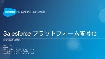 Salesforce プラットフォーム 暗 号 化