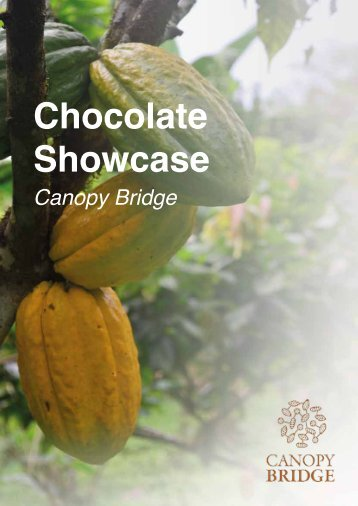 Chocolate Showcase