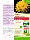 reformleben - Ausgabe Nr. 6 - Seite 7