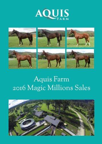 Aquis Farm 2016 Magic Millions Sales