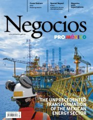 of the Mexican energy sector