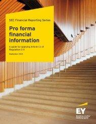 Pro forma financial information