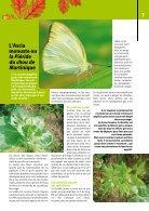 Les jardins de Martinique_no4 - Page 7