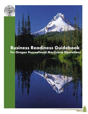 Business Readiness Guidebook