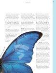 M/V VAN HET JAAR - Page 7