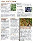 nursery - Page 7