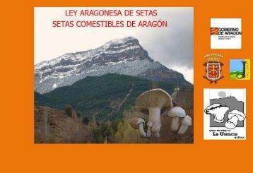 Setas Comestibles de Aragón