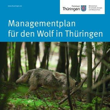 Managementplan für den Wolf in Thüringen