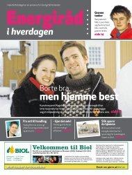 Bilag aviser ENDELIG - til web