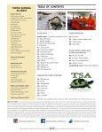 Turtle Survival - Page 3