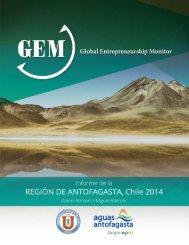 INFORME DE LA REGIÓN DE ANTOFAGASTA CHILE 2014