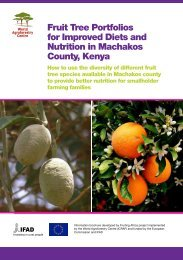 Fruit Tree Portfolios for Improved Diets and Nutrition in Machakos County Kenya