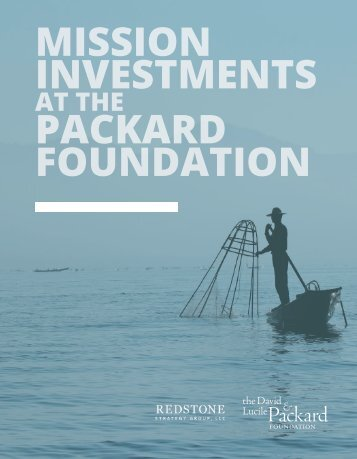 MISSION INVESTMENTS PACKARD FOUNDATION