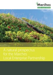 A natural prospectus for the Marches Local Enterprise Partnership