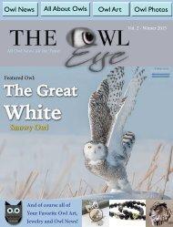 owl_eye_online_int