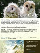 owl_eye_online_int - Page 5