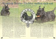 Glammys_Scottish_Terrier_Zucht