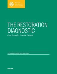 THE RESTORATION DIAGNOSTIC